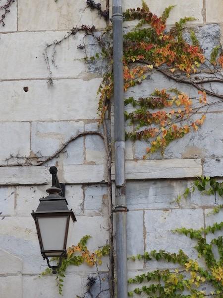 rue de pontarlier-DSCN0339-14-cour-stone-greenery-light-resized-231115