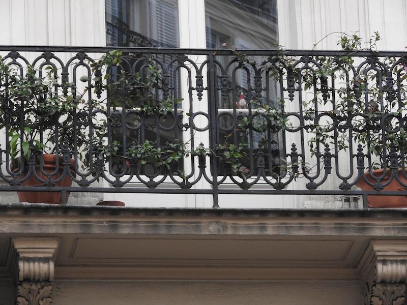 rue pavee-DSCN1416-rue des rosiers-grille-greenery-window-reflections-resized-111215
